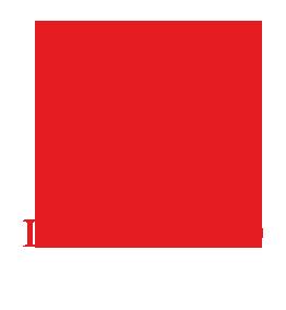logo ufficiale leoni moto